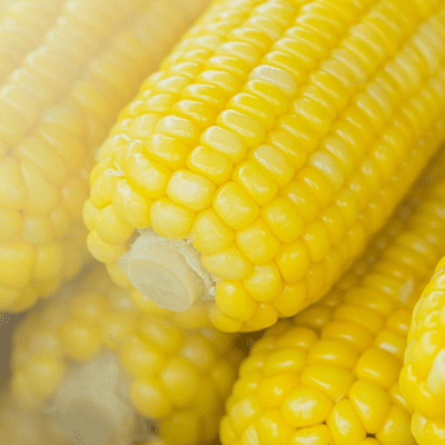 I want to show you the best recipe for making corn on the cob for a crowd. Learning how to cook corn on the cob in the cooler is the perfect solution for hot summer days or potlucks. All you'll need for this super healthy side dish is boiled water, corn, your favorite seasoning and a cooler. You'll be surprised at how quickly it will cook.