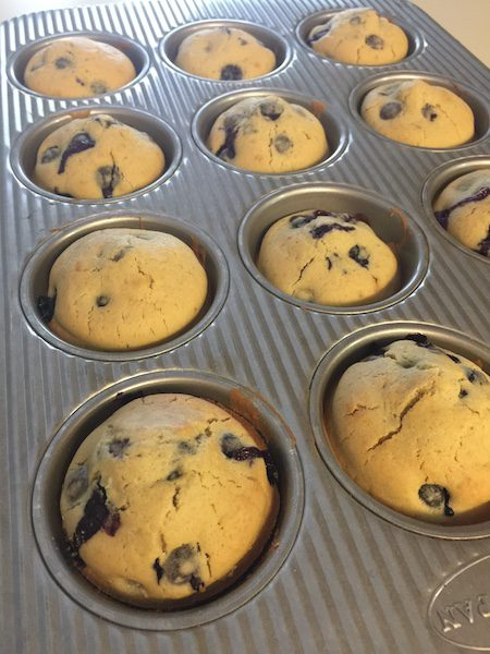 blueberry muffins in usa muffin pan